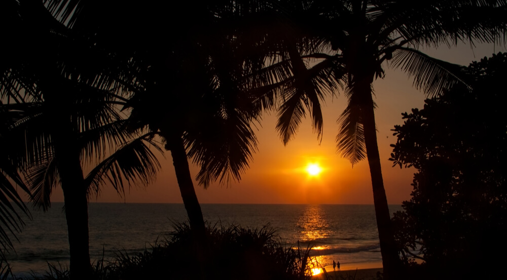 KERALA, INDIA. Red sunset and silhouettes of palm trees on the beach. Chowara, Kerala, South-west India
