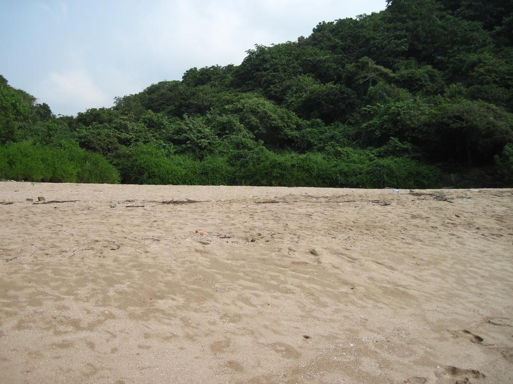 Butterfly beach Goa