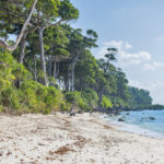 Laxmanpur beach Andaman and Nicobar Island