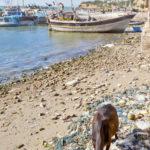 Bet Dwarka Beach
