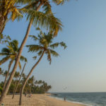 Marari Beach in Kerala is one of the most popular and beautiful beaches in India